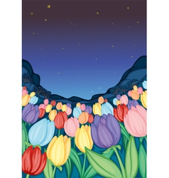 Tulip farm vector