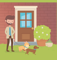 young man with little dogs mascots in house vector image