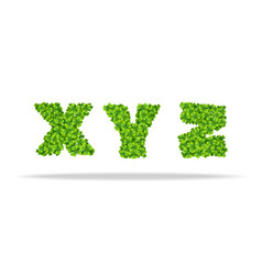 alfavit from the leaves of the clover letters xyz vector image vector image