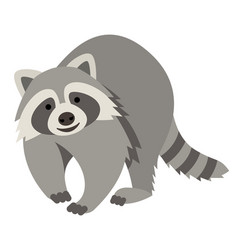 Cute smiling raccoon cartoon vector