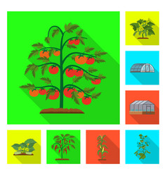 Design of greenhouse and plant logo set of vector