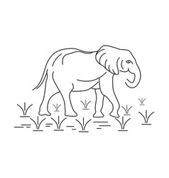elephant outline logo vector image