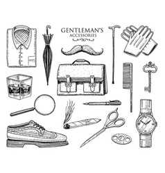 gentleman accessories set hipster or businessman vector image