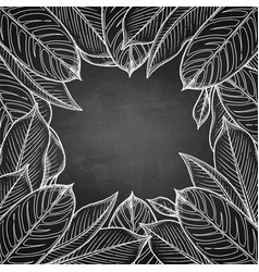 Graphic heliconia leaves vector