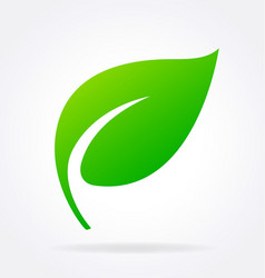 Single stylized lush green leaf with stem vector