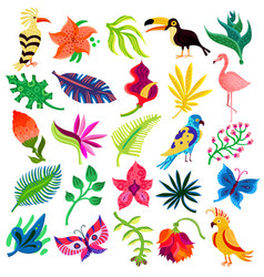 Tropical flora and fauna vector