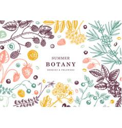 Wild berries vintage design in color hand drawn vector