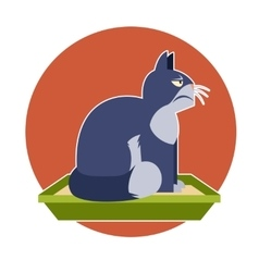 Angry cat on the toilet vector image