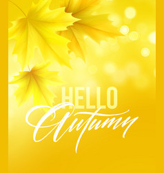 autumn poster with lettering and yellow autumn vector image
