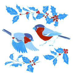 bullfinches and holly vector image