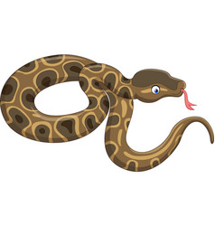 Cartoon snake isolated on white background vector