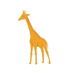 Giraffe african animal vector