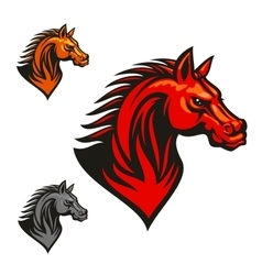 Horse stallion head and mane vector