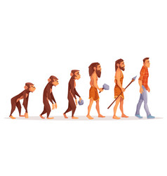 Human evolution stages cartoon concept vector