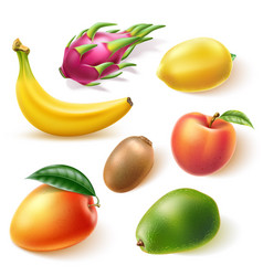 realistic fresh exotic whole fruits set vector image