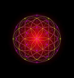 Seed life symbol sacred geometry indian mandala vector