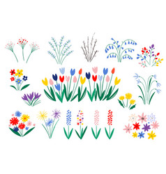 set spring flowers in a flat style isolated on vector image