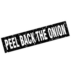 Square grunge black peel back the onion stamp vector