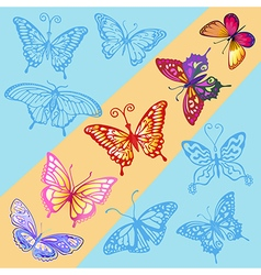 A ray of sun in the blue sky colored butterfly vector