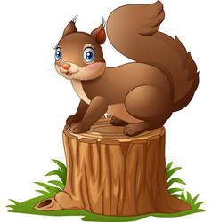 Cute squirrel cartoon standing on tree stump vector