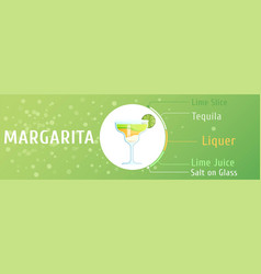 mojito cocktail ingredients trendy stylish flat vector image