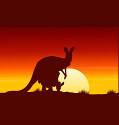 at sunrise kangaroo scenery beauty landscape vector image