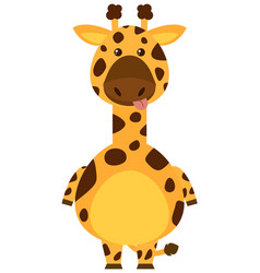 giraffe with sill face vector image vector image