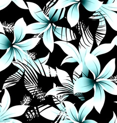 Tropical white frangipani hibiscus with black vector image