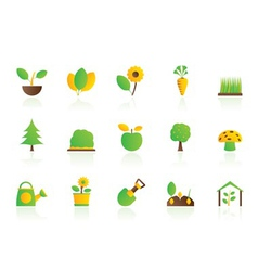 different plants and gardening icons vector image