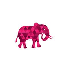 elephant logo template icon vector image