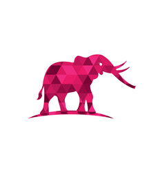 elephant logo template icon vector image