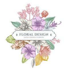 Floral bouquet design with pastel laelia feijoa vector