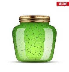 Glass Jar with kiwi jam vector image
