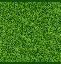 Green grass seampess texture - summer background vector