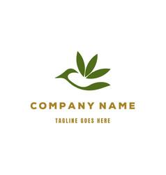 Modern bird leaf eco nature herbal logo design vector