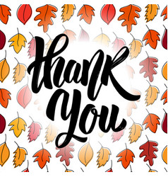 thank you hand drawn positive quote vector image