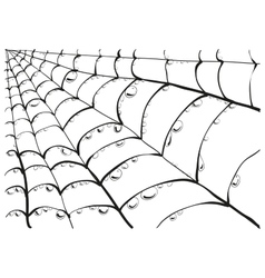Angle segment of spederweb with dew drops vector