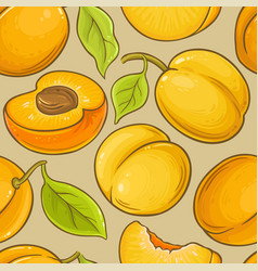 Apricot fruit pattern on color background vector