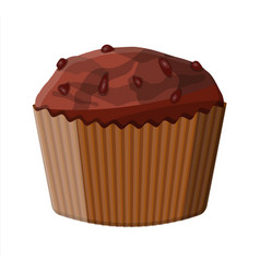 chocolate muffin dessert chcolate cupcake vector image
