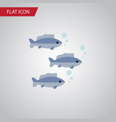 isolated fish flat icon tuna element can vector image