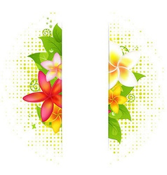 Natural Background With Flower vector image