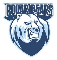 polar bear head mascot vector image