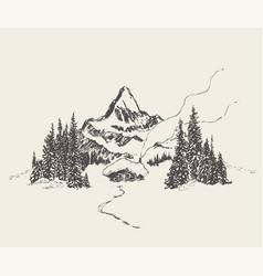 Beautiful cozy house mountain fir forest vector