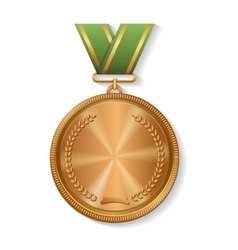 blank champion bronze medal with ribbon vector image