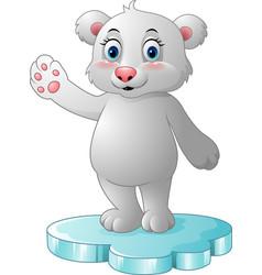cartoon polar bear standing on floe vector image