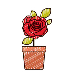 Color pencil drawing of flowered red rose with vector