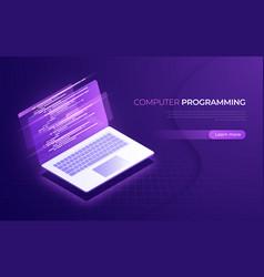 computer programming coding testing debugging vector image