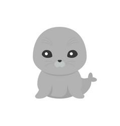 Cute seal cartoon character vector
