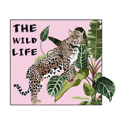 graceful leopard and tropical leaves savana cat vector image