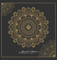 Henna Mandala tattoo design vector image